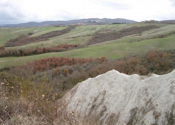 Agriturismo Bardanella - Calanchi